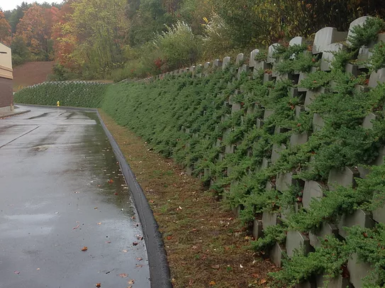 Commercial Living Retaining Wall